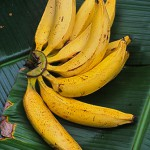 Banane Netram Palam