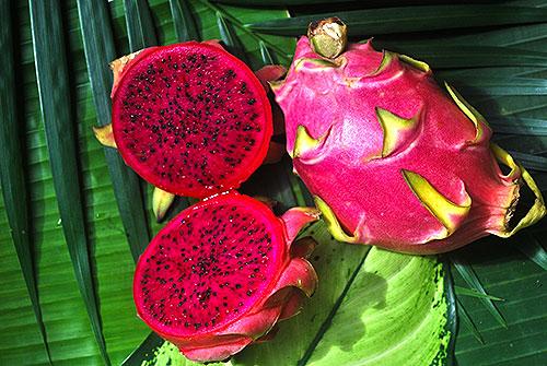 exotische fr chte in sri lanka fruchtlawine. Black Bedroom Furniture Sets. Home Design Ideas