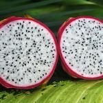 Drachenfrucht weiß